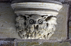 One of the many faces of the gargoyles around Yale Campus.