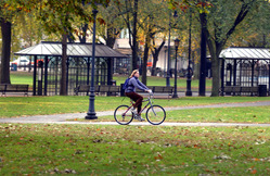Biking on New Haven Green.