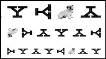 Yale eye chart