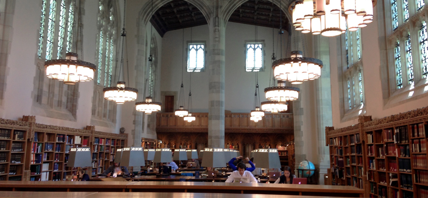 Reading in Sterling Library.