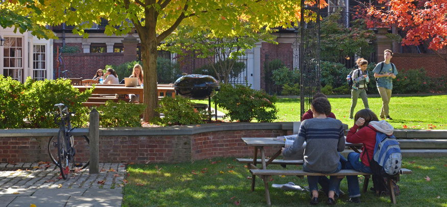 Students enjoying a fall afternoon at Timothy Dwight College courtyard.